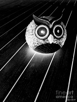 Photograph - Night Owl by Lyric Lucas