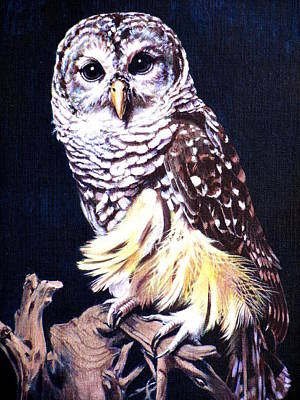 Painting - Night Owl by Vivien Rhyan