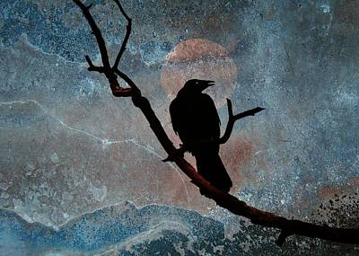 Perched Night Bird  Art Print