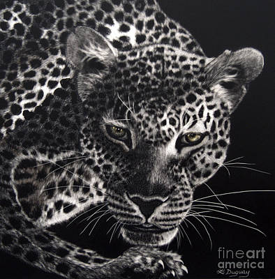 Drawing - Night Prowler by Lora Duguay