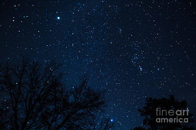 Photograph - Night Skies Over Degray by Jim McCain