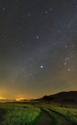 Sirius Photograph - Night Sky In Dark Sky Reserve by Babak Tafreshi