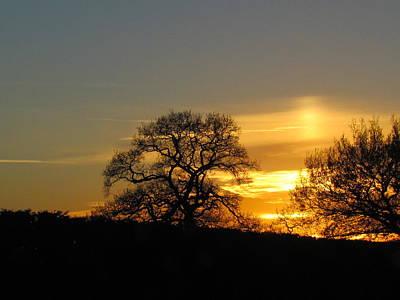 Photograph - Night Sky  by Joyce Woodhouse
