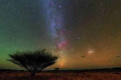 Night Sky Over A Savanna Art Print