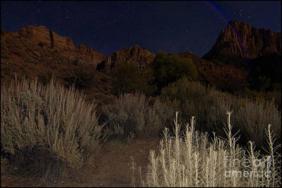 Photograph - Night Sky Over Zion II by Angelique Olin