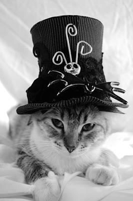 Jack Skellington Photograph - Nightmare Before Christmas Kitty by Cuca Montoya