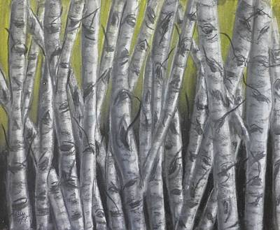 Drawing - Nighttime Birch by Kelly Mills