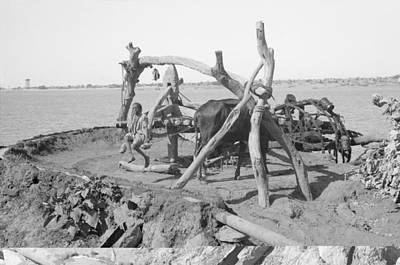 Nile Irrigation Pump, Sudan, 1936 Art Print by Science Photo Library