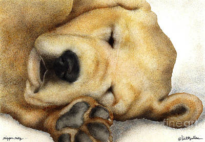 Yellow Lab Painting - Nipper Nap... by Will Bullas