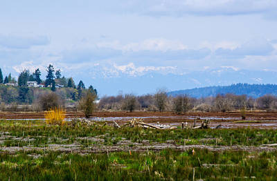Photograph - Nisqually Delta Of The Nisqually National Wildlife Refuge by Tikvah's Hope