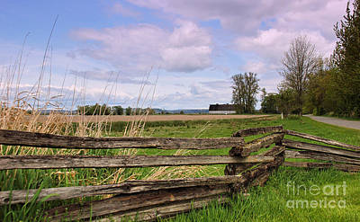 Photograph - Nisqually Twin Barns by Chuck Flewelling
