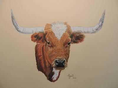Longhorn Drawing - No Bull by Gail Seufferlein