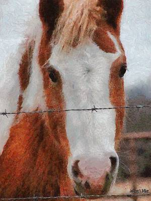 Equine Drawing - No Fences by Jeff Kolker