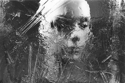 Photograph - No Regrets by Michael Howard