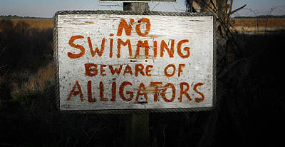 Photograph - No Swimming by Christy Usilton