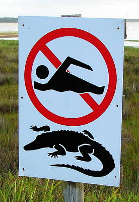 Photograph - No Swimming by Ramona Johnston