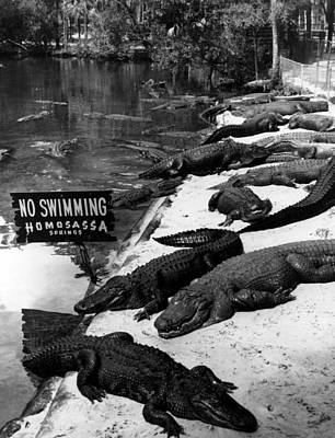 No Swimming Print by Retro Images Archive
