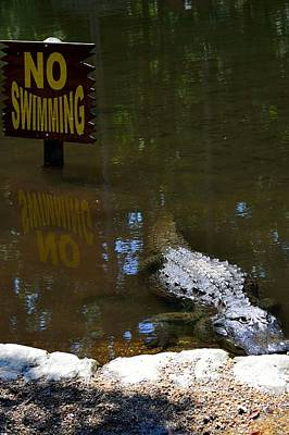 Photograph - No Swimming by Richard Zentner