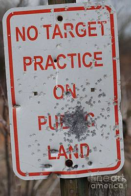 Photograph - No Target Practice by Mark McReynolds