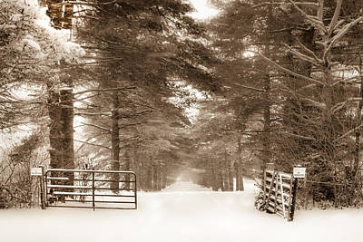 Photograph - No Trespassing - Sepia by Ron Pate