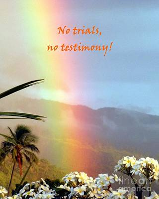 Photograph - No Trials No Testimony by Barbie Corbett-Newmin