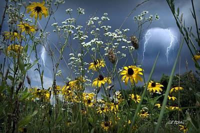 No Vase Needed Art Print by Bill Stephens