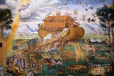 Photograph - Noah's Ark - Two By Two by David Grant