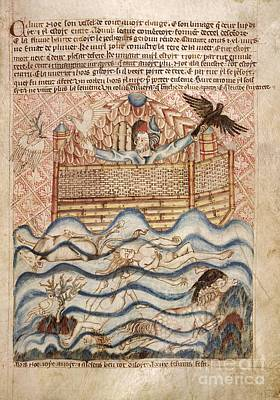 Wildlife Disasters Photograph - Noah's Flood, 14th-century Manuscript by British Library