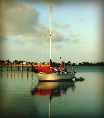 Blue And Red Photograph - Noah's Jubilee by Karen Wiles