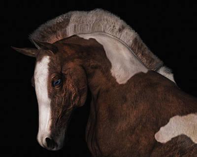 Animals Digital Art - Noble by Betsy Knapp