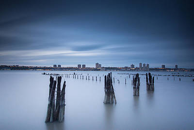 Photograph - Nocturnal by Johnny Lam