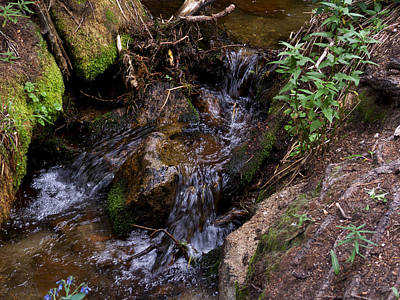 Photograph - Noisy Little Waterfall by Thomas Samida