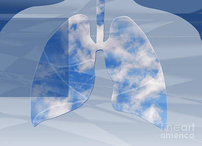 Photograph - Non-polluted Lungs by Monica Schroeder
