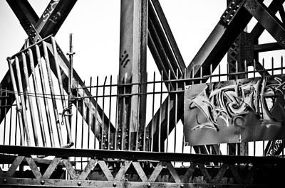 Burmese Python Wall Art - Photograph - None Shall Pass by Matthew Blum