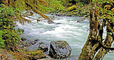 Nooksack River Rapids Washington State Art Print