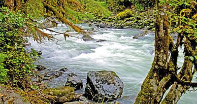 Nooksack River Rapids Washington State Art Print