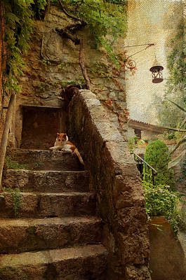 Old Village Photograph - Noon Rest On The Stairs. Eze. France by Jenny Rainbow