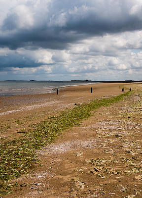 Razor Clams Wall Art - Photograph - Norfolk Tide Line by Dave Lee