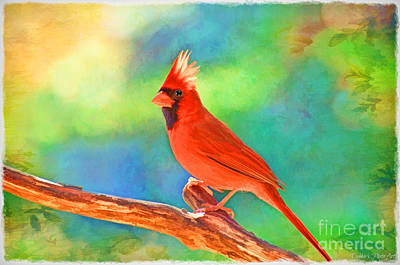 Photograph - Norghern Cardinal With Bokeh - Digital Paint I by Debbie Portwood