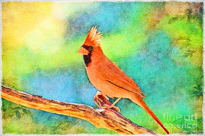 Photograph - Norghern Cardinal With Bokeh - Digital Paint II by Debbie Portwood