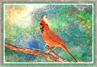 Photograph - Norghern Cardinal With Bokeh - Digital Paint Iv by Debbie Portwood