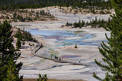 Photograph - Norris Geyser Basin by Jennifer White