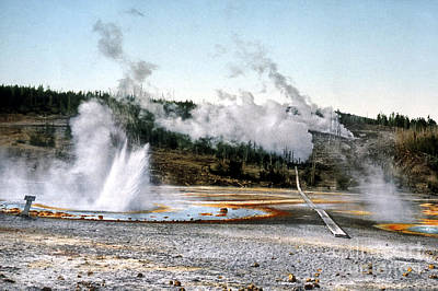Photograph - Norris Geyser Basin Yellowstone National Park by NPS Photo Detroit Photographic Co