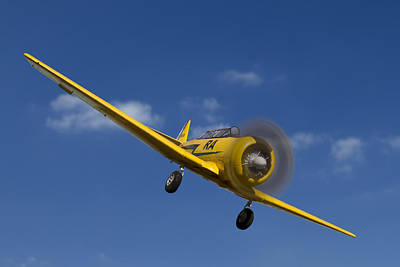 Airlines Photograph - North American T6 by Debra and Dave Vanderlaan
