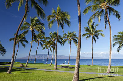 Photograph - North Beach Ka'anapali by David Olsen