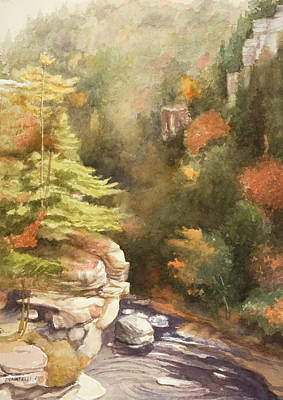 North Carolina Autumn Majesty Art Print