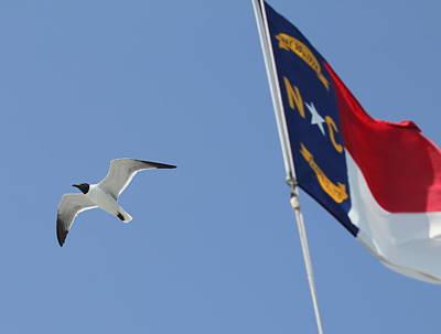 Nc Photograph - North Carolina Flag And Seagull by Cathy Lindsey