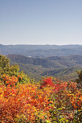 Photograph - North Carolina Mountains In Autumn by Jill Lang