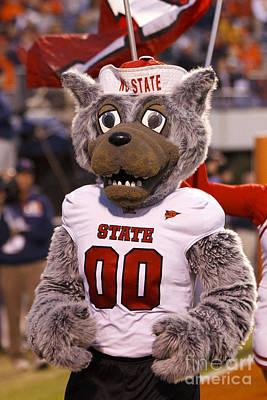 Jason O. Watson Photograph - North Carolina State Wolfpack Mascot by Jason O Watson