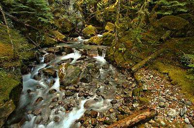 Photograph - North Cascades Creek by Adam Jewell